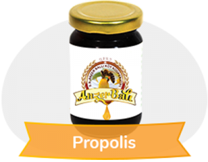 - Propolis Katı 100 gr % 95 lik. exrakt