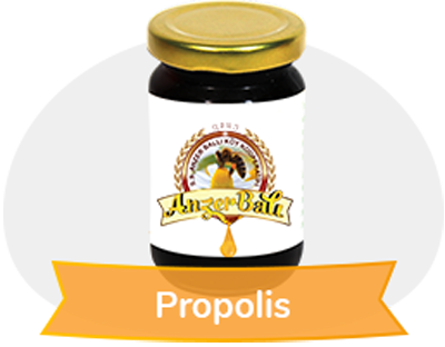 2019 - 2020 Propolis Katı 100 gr % 95 lik. exrakt