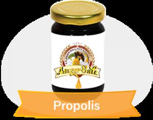 2019 - 2020 Propolis Katı 50 gr % 95 lik Exrakt - Thumbnail